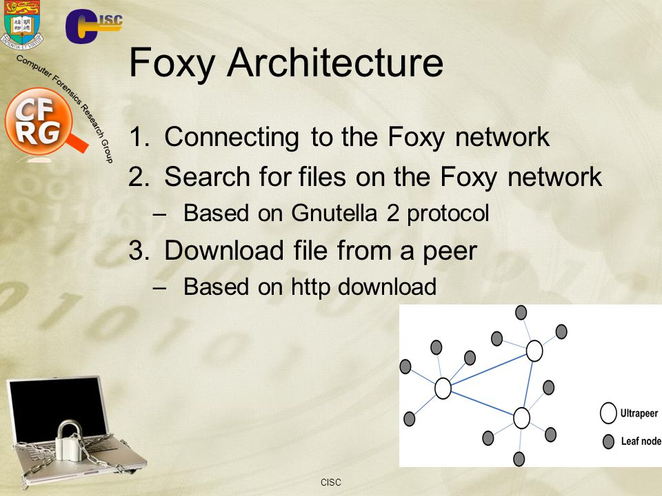 Foxy Architecture Connecting to the Foxy network