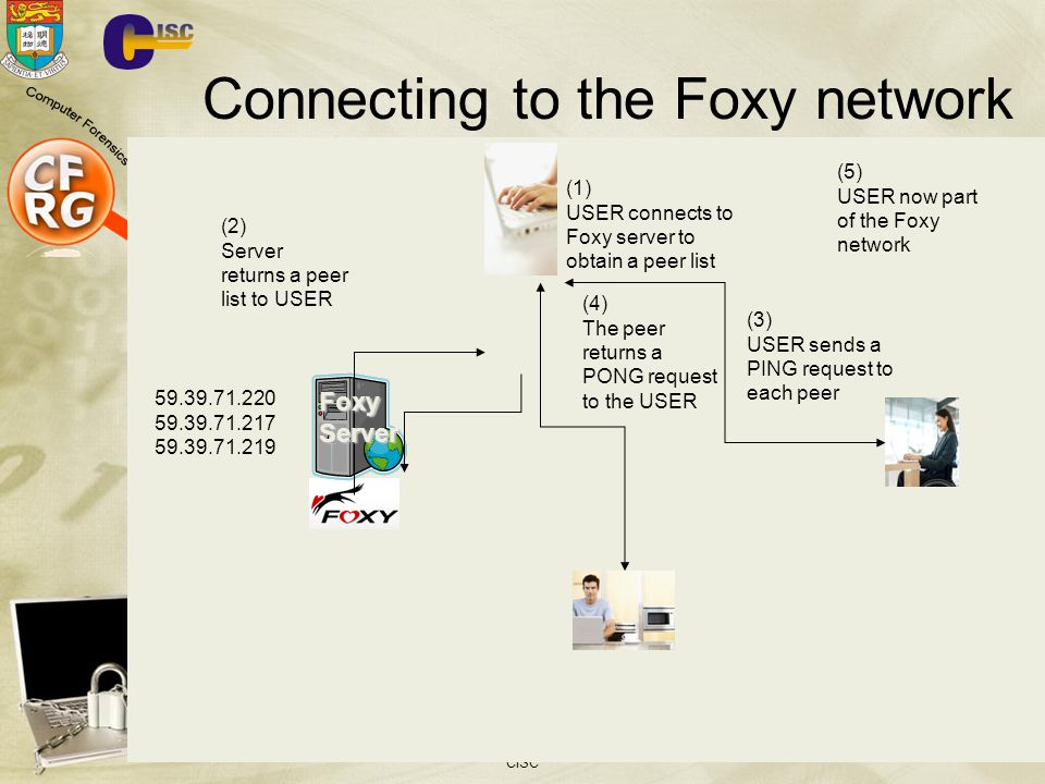 Connecting to the Foxy network