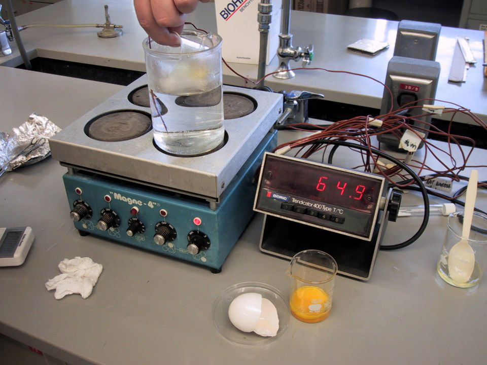 To demonstrate that 65°C is hot, egg white is added to 65°C water.