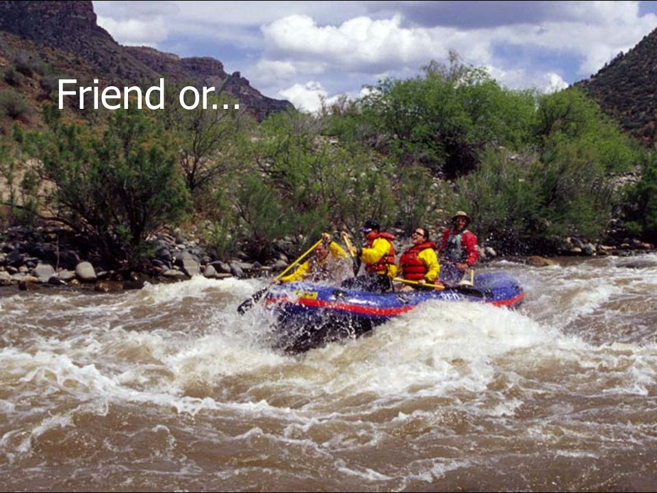 Friend or… Upper Salt River, Ariz.