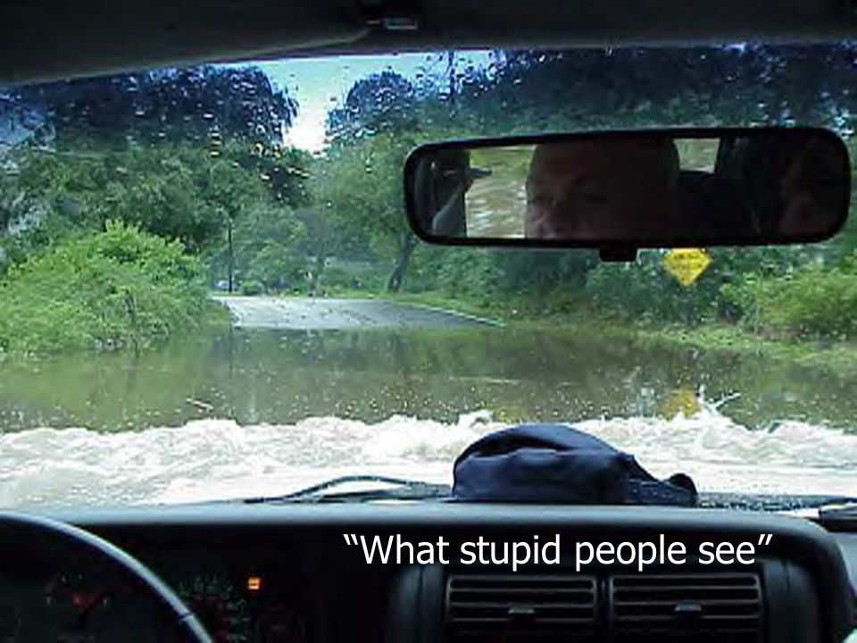 What stupid people see