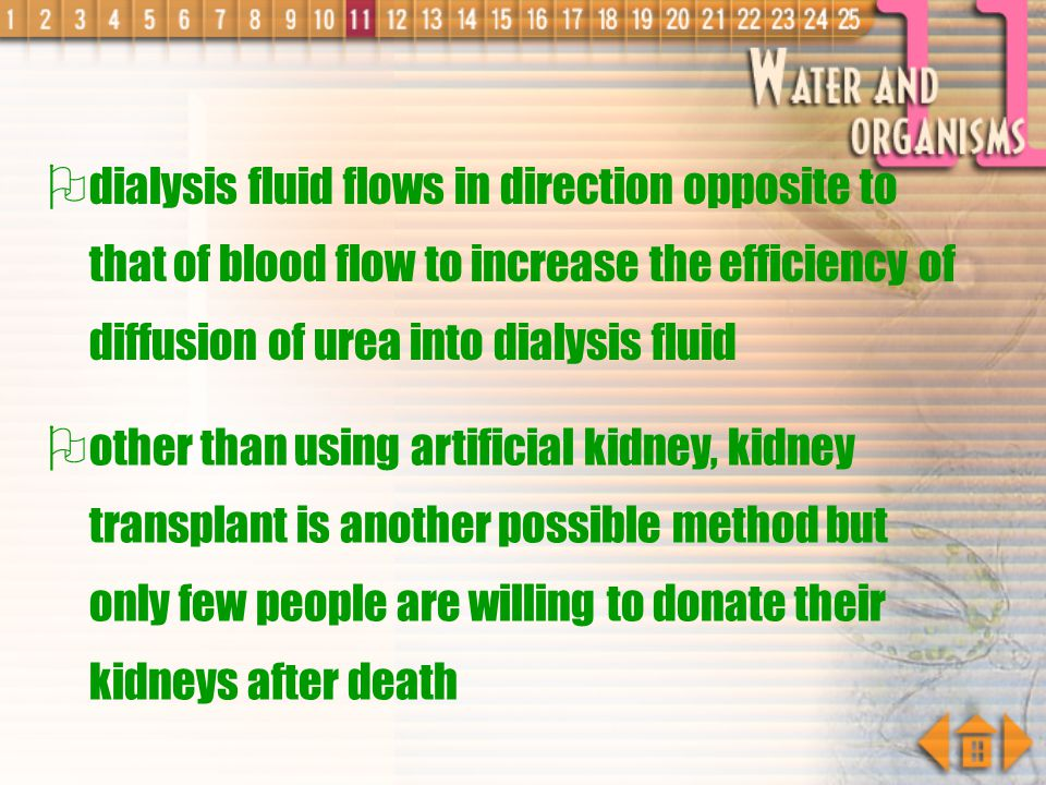 dialysis fluid flows in direction opposite to that of blood flow to increase the efficiency of diffusion of urea into dialysis fluid