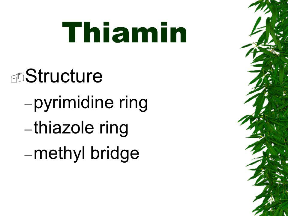 Thiamin Structure pyrimidine ring thiazole ring methyl bridge