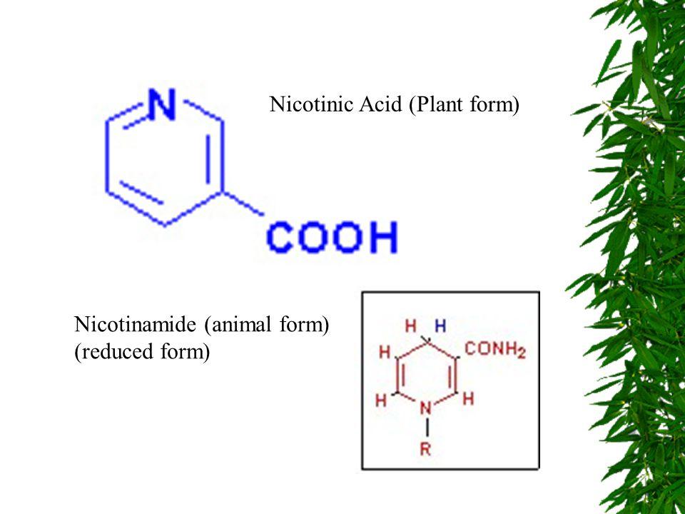 Nicotinic Acid (Plant form)