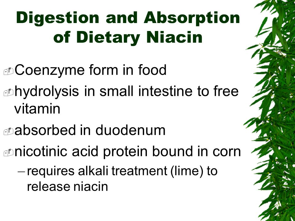 Digestion and Absorption of Dietary Niacin