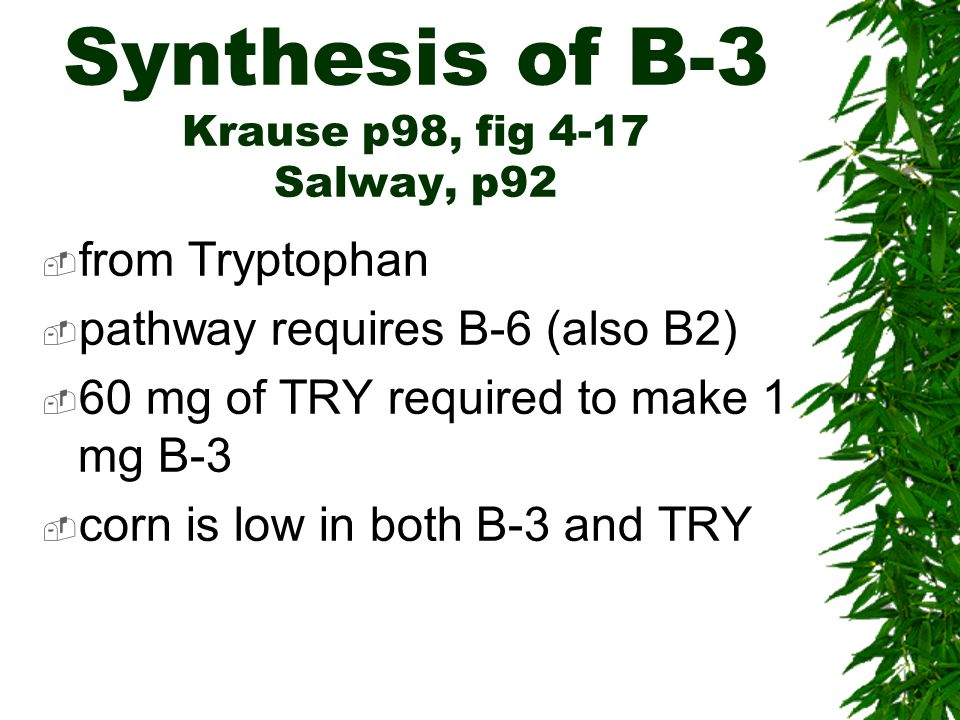 Synthesis of B-3 Krause p98, fig 4-17 Salway, p92