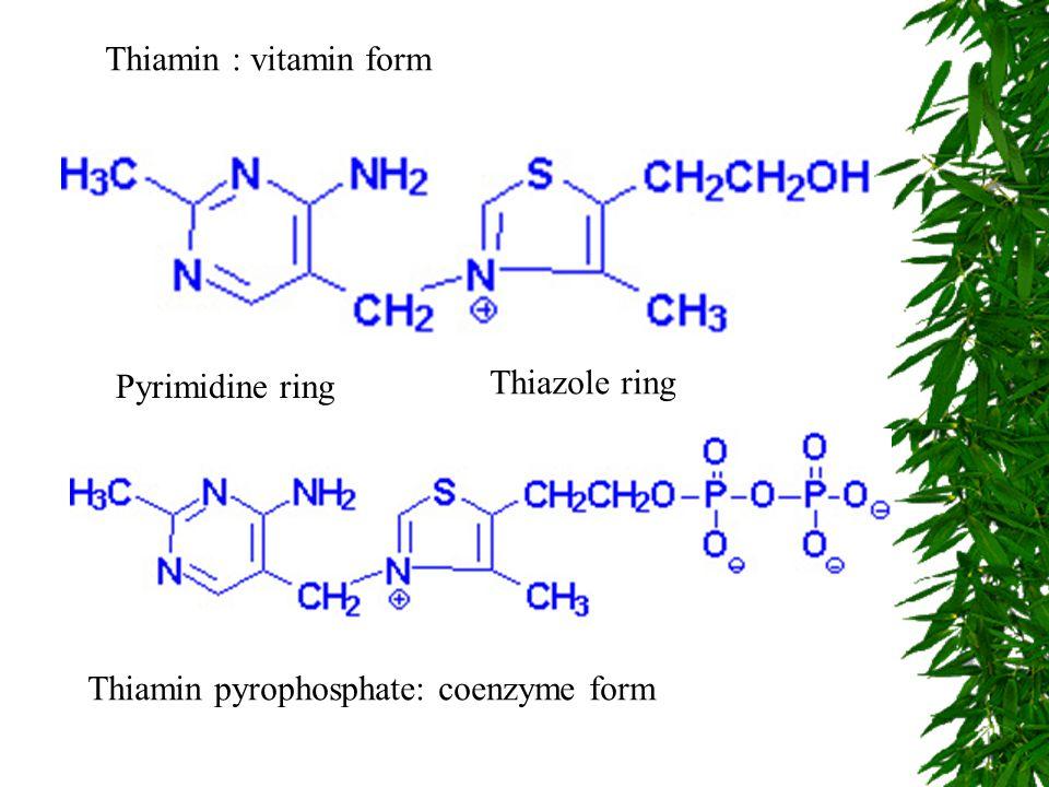 Thiamin : vitamin form Pyrimidine ring Thiazole ring Thiamin pyrophosphate: coenzyme form