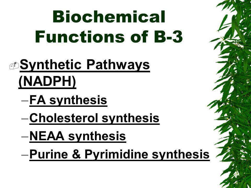 Biochemical Functions of B-3