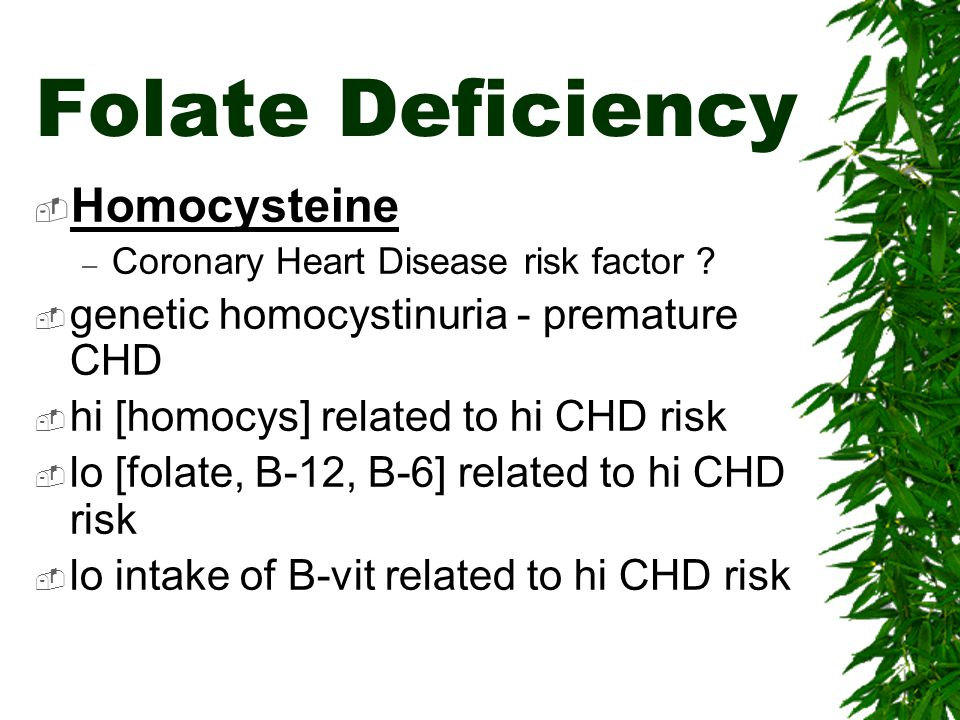 Folate Deficiency Homocysteine genetic homocystinuria - premature CHD