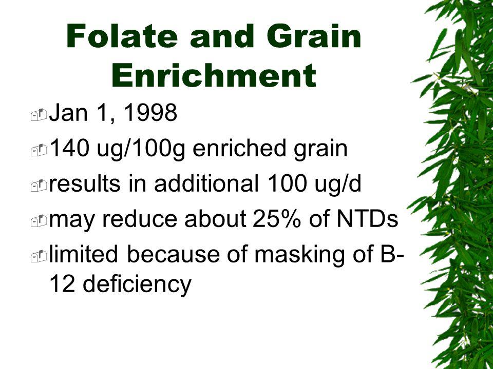 Folate and Grain Enrichment