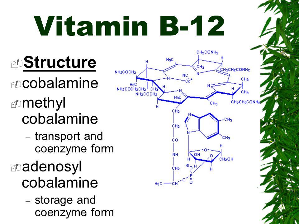 Vitamin B-12 Structure cobalamine methyl cobalamine