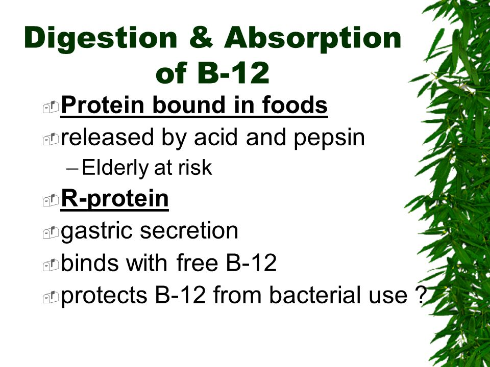 Digestion & Absorption of B-12