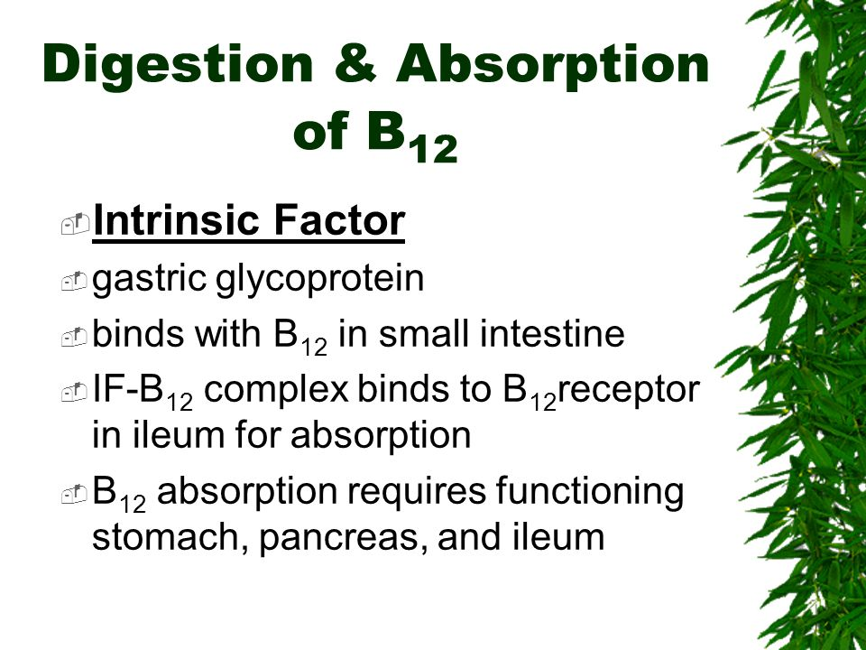 Digestion & Absorption of B12