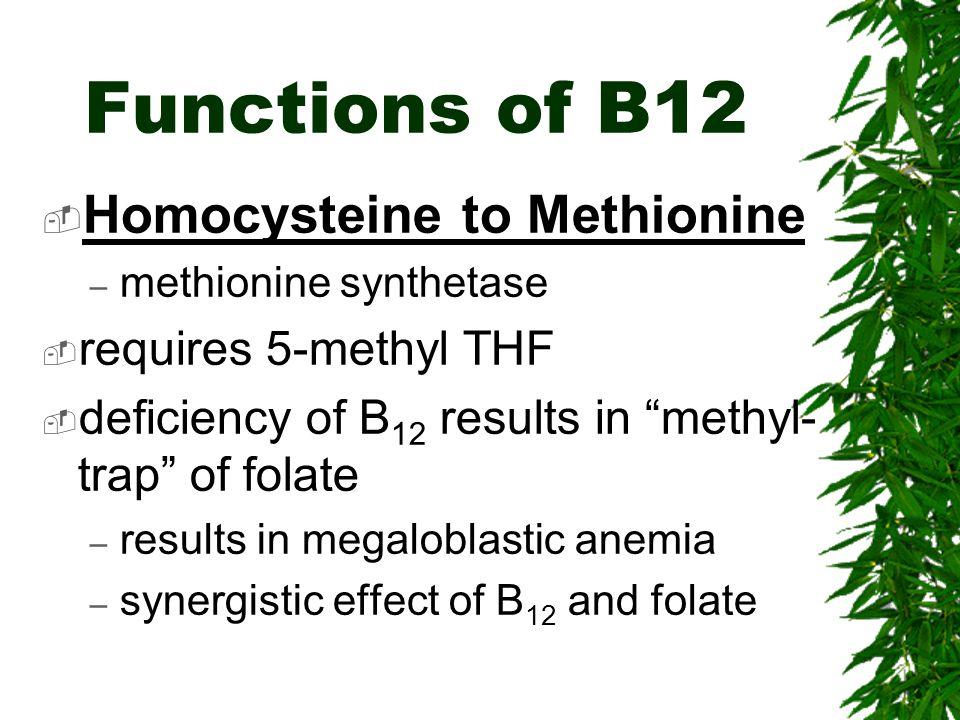 Functions of B12 Homocysteine to Methionine requires 5-methyl THF
