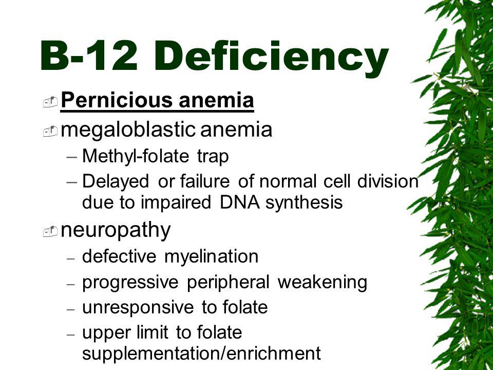 B-12 Deficiency Pernicious anemia megaloblastic anemia neuropathy