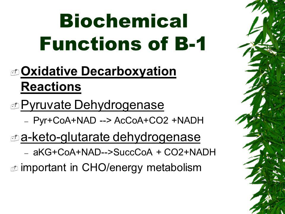 Biochemical Functions of B-1