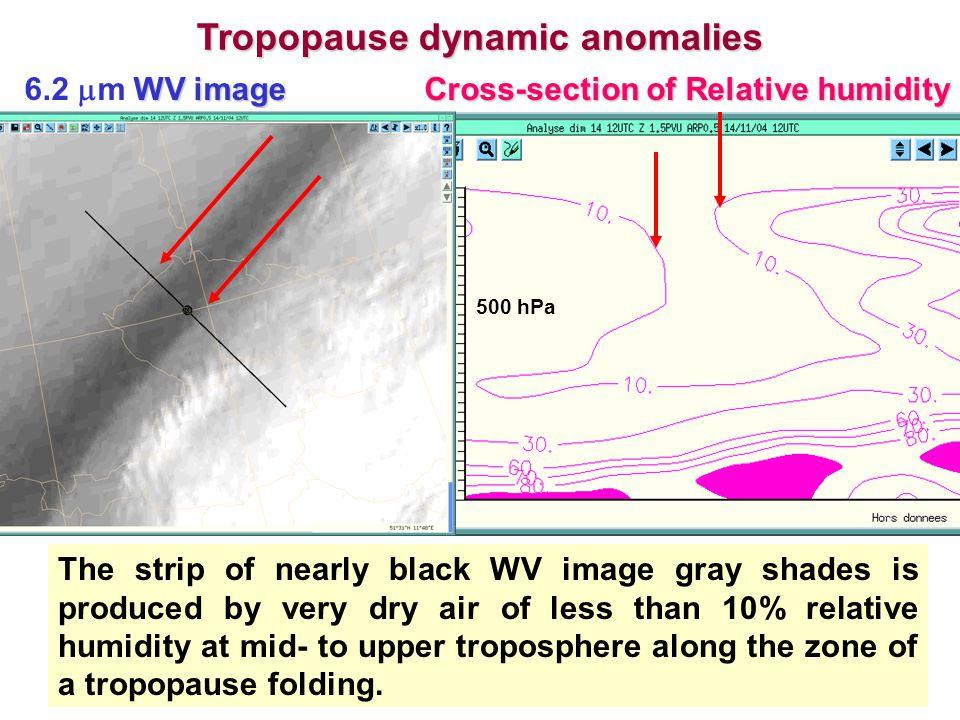 Tropopause dynamic anomalies