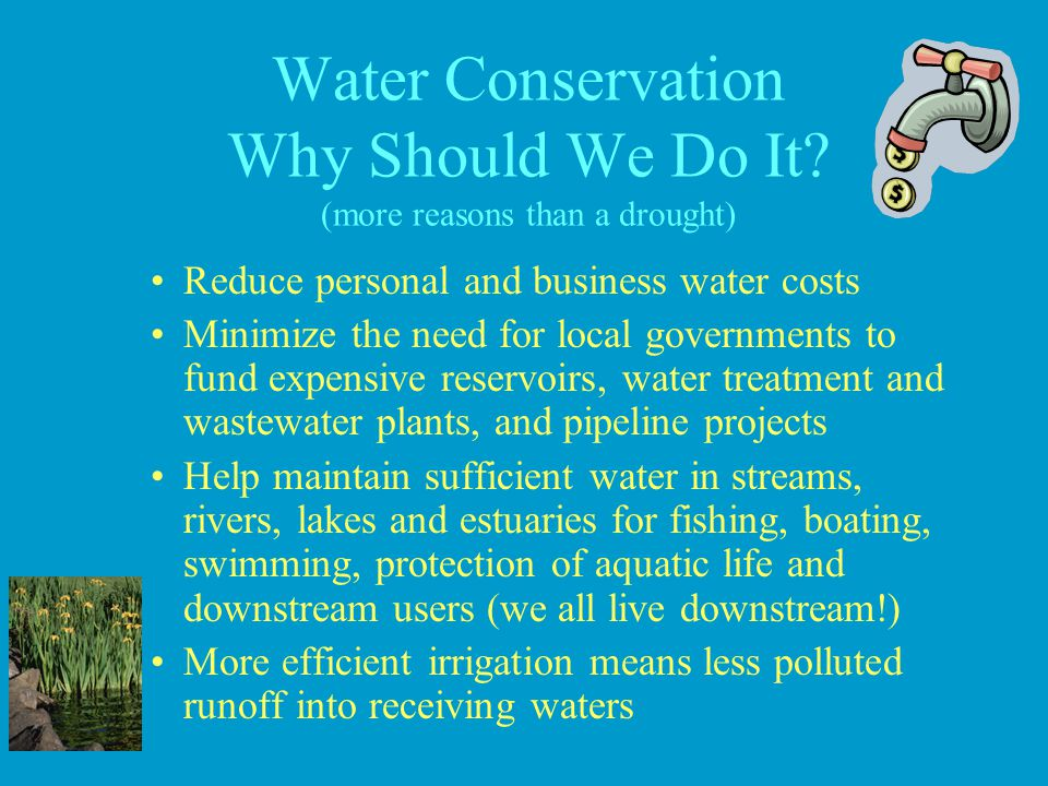 Water Conservation Why Should We Do It (more reasons than a drought)