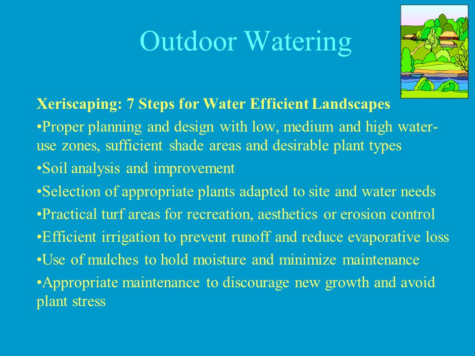 Outdoor Watering Xeriscaping: 7 Steps for Water Efficient Landscapes