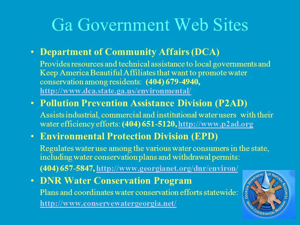 Ga Government Web Sites