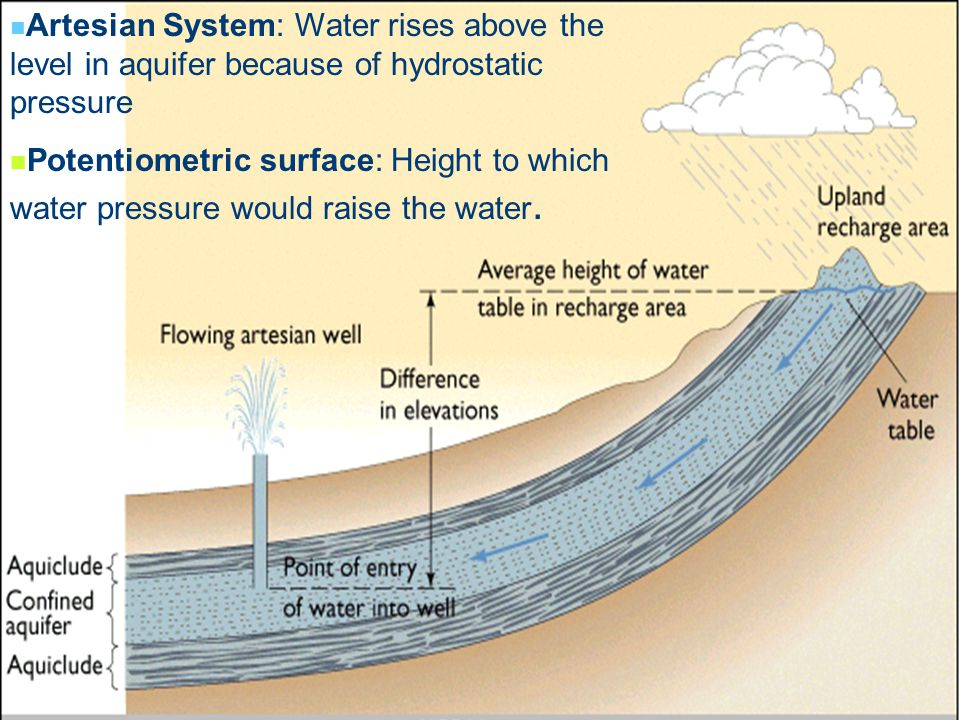 Artesian System: Water rises above the level in aquifer because of hydrostatic pressure