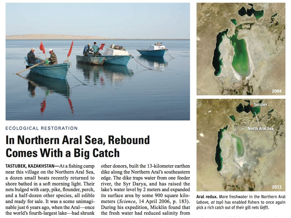 From Science Vol 334 p303 – 2011: TASTUBEK, KAZAKHSTAN—At a fishing camp near this village on the Northern Aral Sea, a dozen small boats recently returned to shore bathed in a soft morning light. Their nets bulged with carp, pike, flounder, perch, and a half-dozen other species, all edible and ready for sale. It was a scene unimaginable just 6 years ago, when the Aral—once the world s fourth-largest lake—had shrunk to one-tenth of its original size. Soviet-era planners had diverted most of the water that flowed into the lake from two rivers to irrigate cotton, creating three smaller lakes that became too salty for most fish. Catches that once totaled more than 50,000 tons a year plummeted to just 52 tons in 2004.