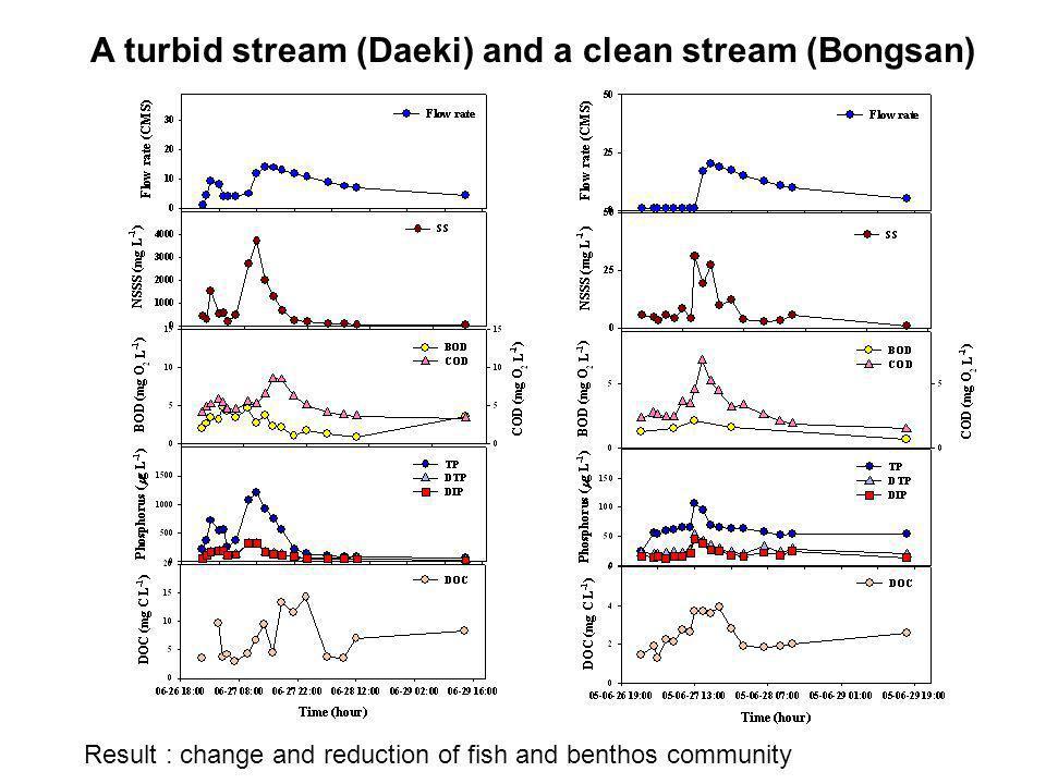 A turbid stream (Daeki) and a clean stream (Bongsan)