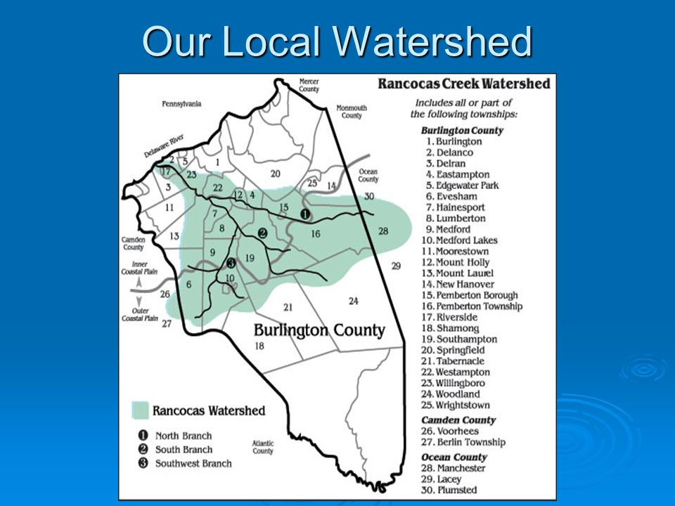 Our Local Watershed