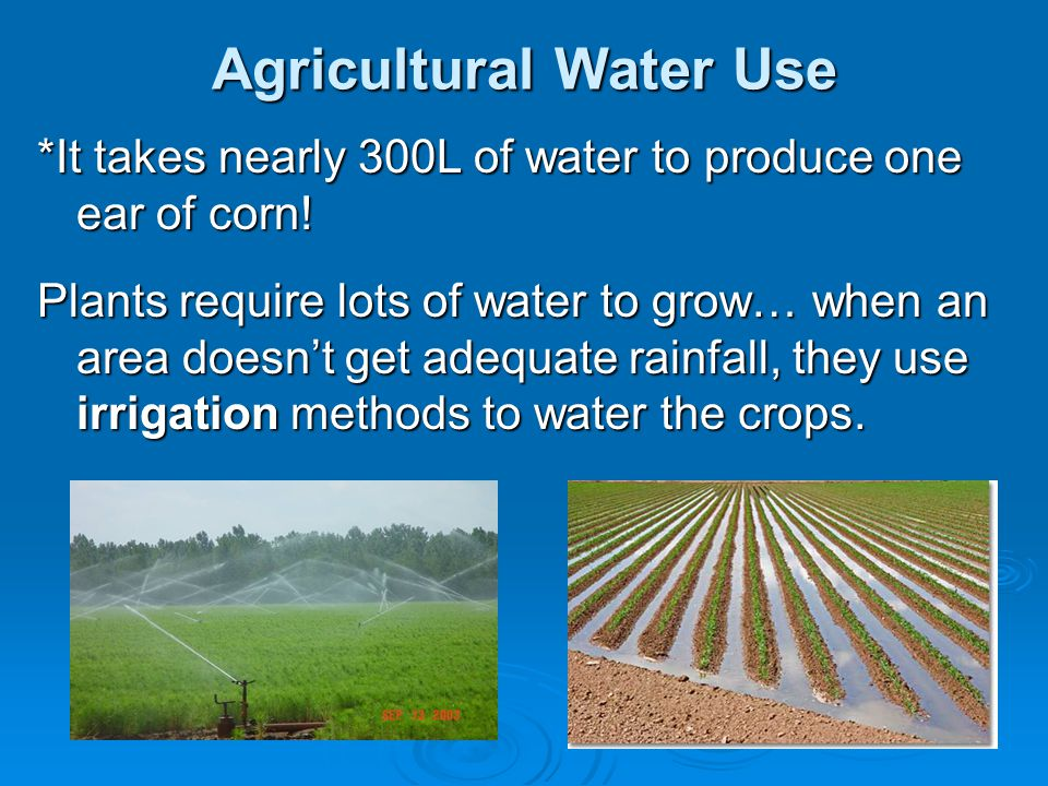 Agricultural Water Use