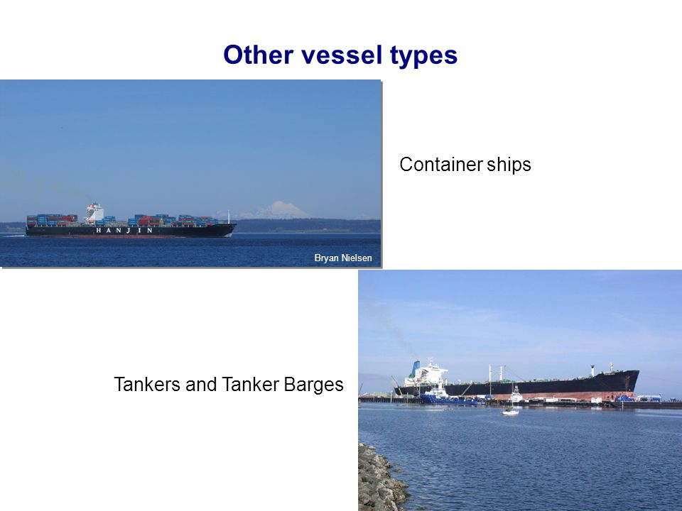 Other vessel types Container ships Tankers and Tanker Barges