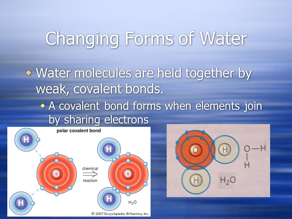 Changing Forms of Water