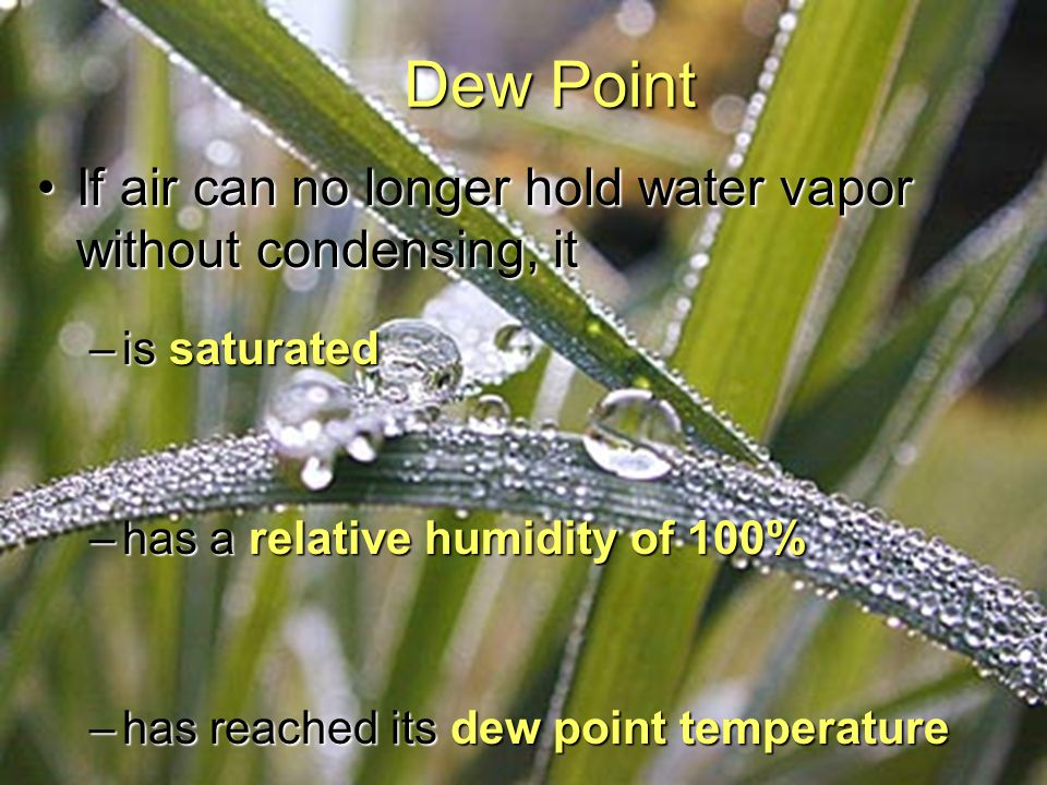 Dew Point If air can no longer hold water vapor without condensing, it