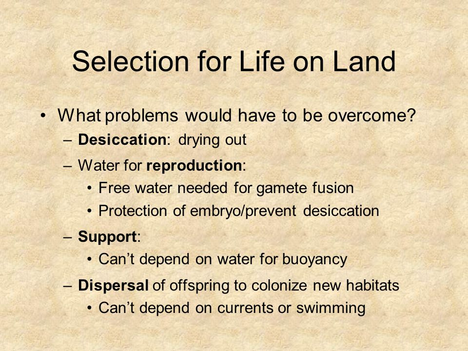 Selection for Life on Land