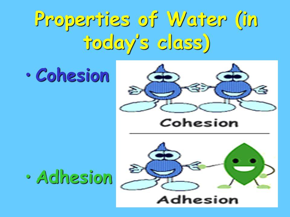 Properties of Water (in today's class)