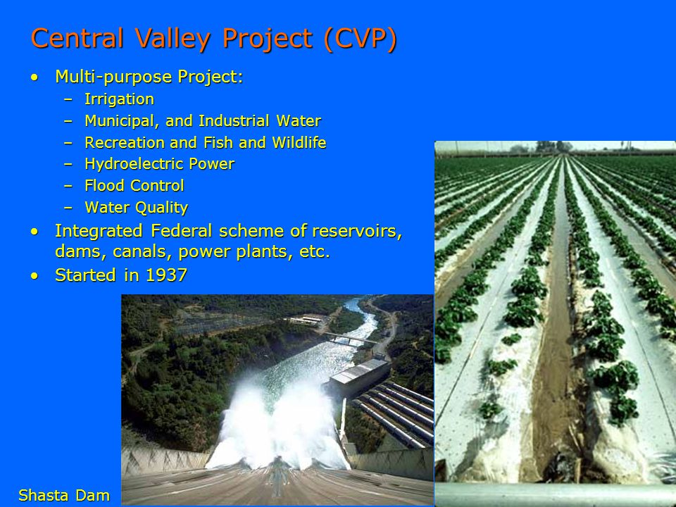 Central Valley Project (CVP)