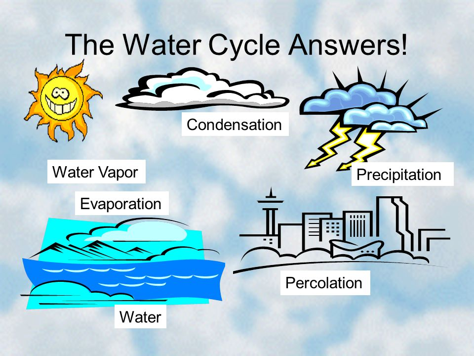 The Water Cycle Answers!