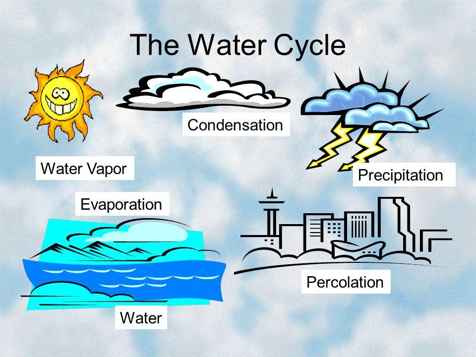 The Water Cycle Condensation Water Vapor Precipitation Evaporation
