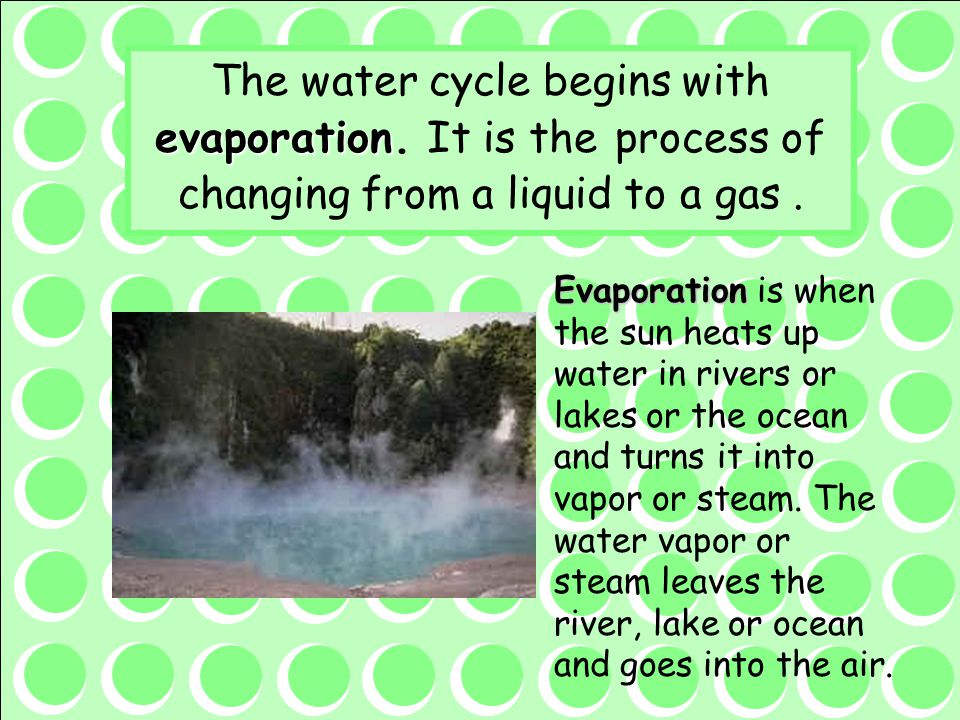 The water cycle begins with evaporation