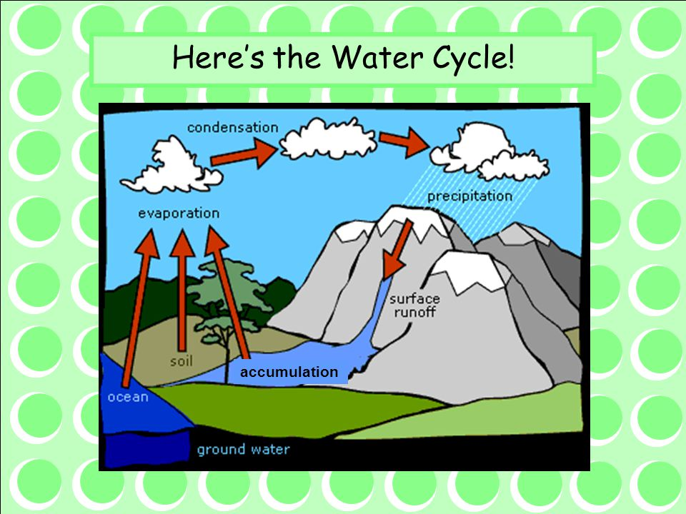 Here's the Water Cycle! accumulation