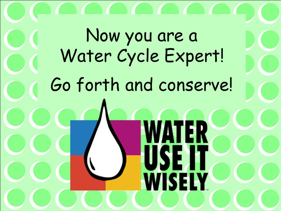 Now you are a Water Cycle Expert! Go forth and conserve!