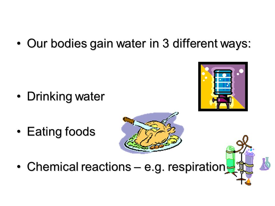 Our bodies gain water in 3 different ways:
