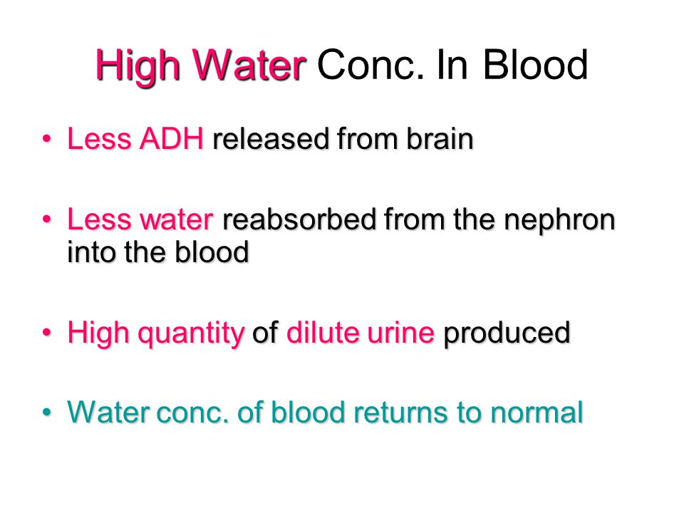 High Water Conc. In Blood