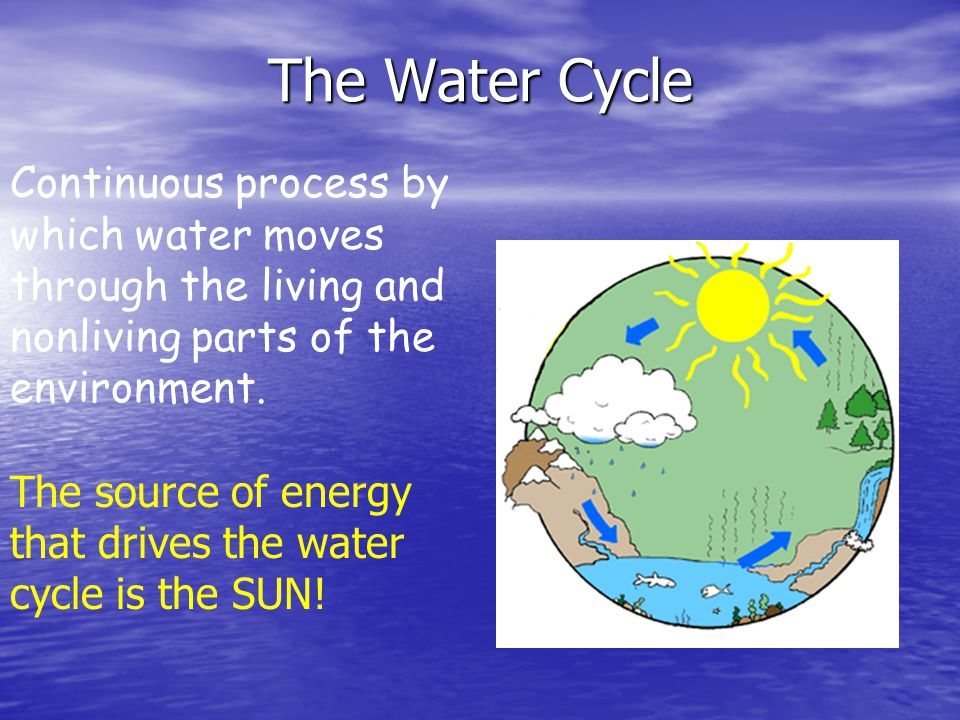 The Water Cycle Continuous process by which water moves through the living and nonliving parts of the environment.