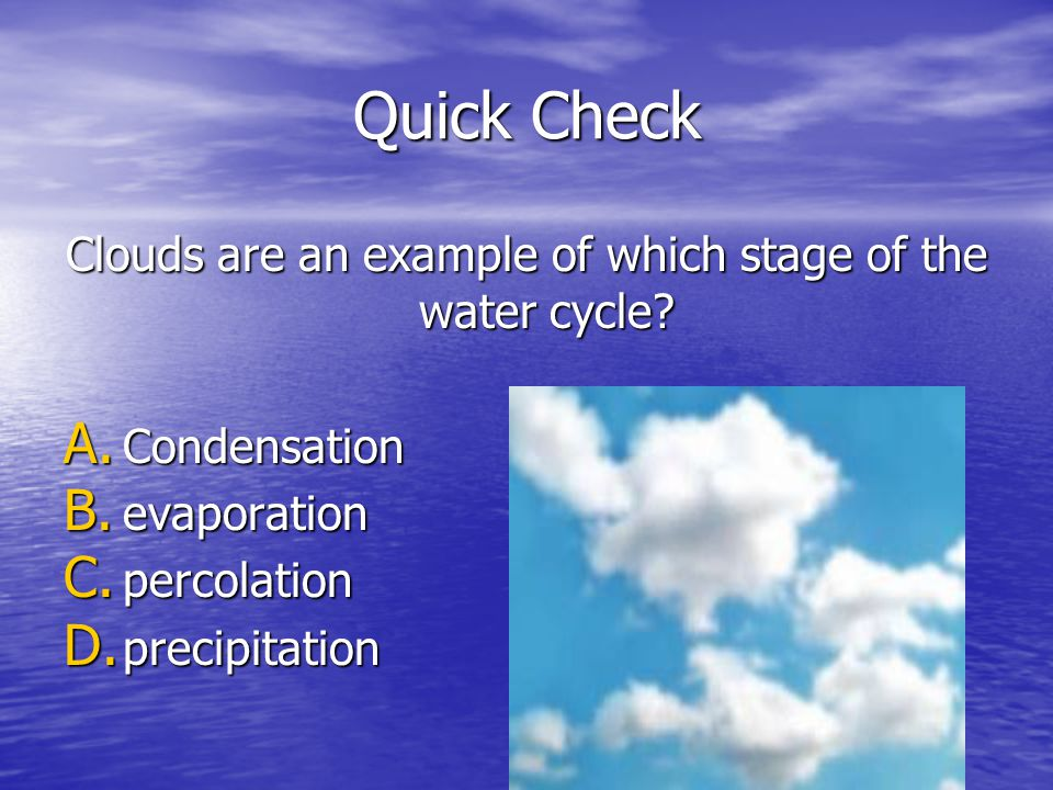 Clouds are an example of which stage of the water cycle