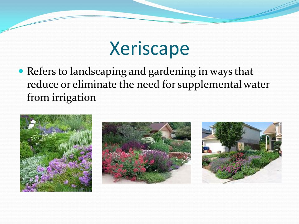 Xeriscape Refers to landscaping and gardening in ways that reduce or eliminate the need for supplemental water from irrigation.