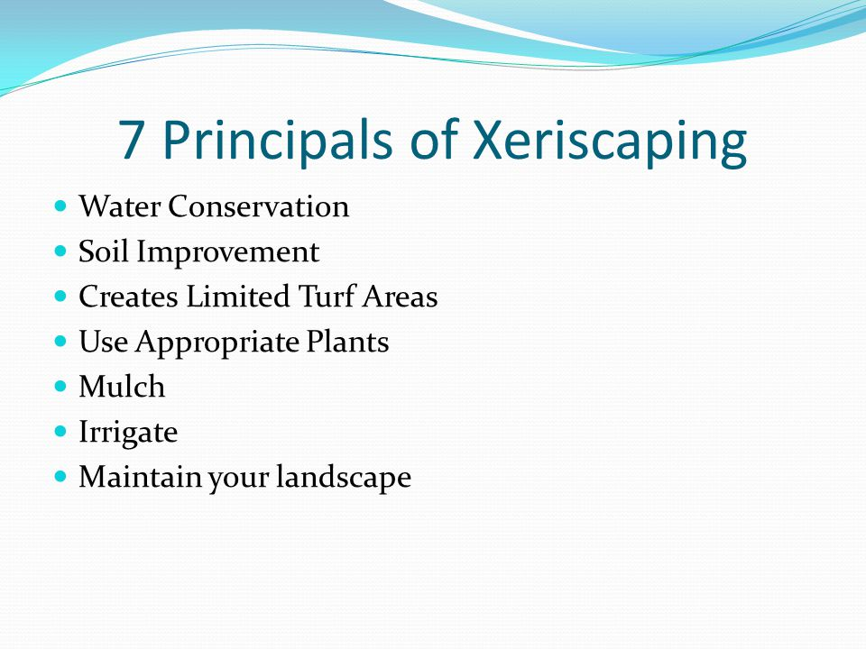 7 Principals of Xeriscaping