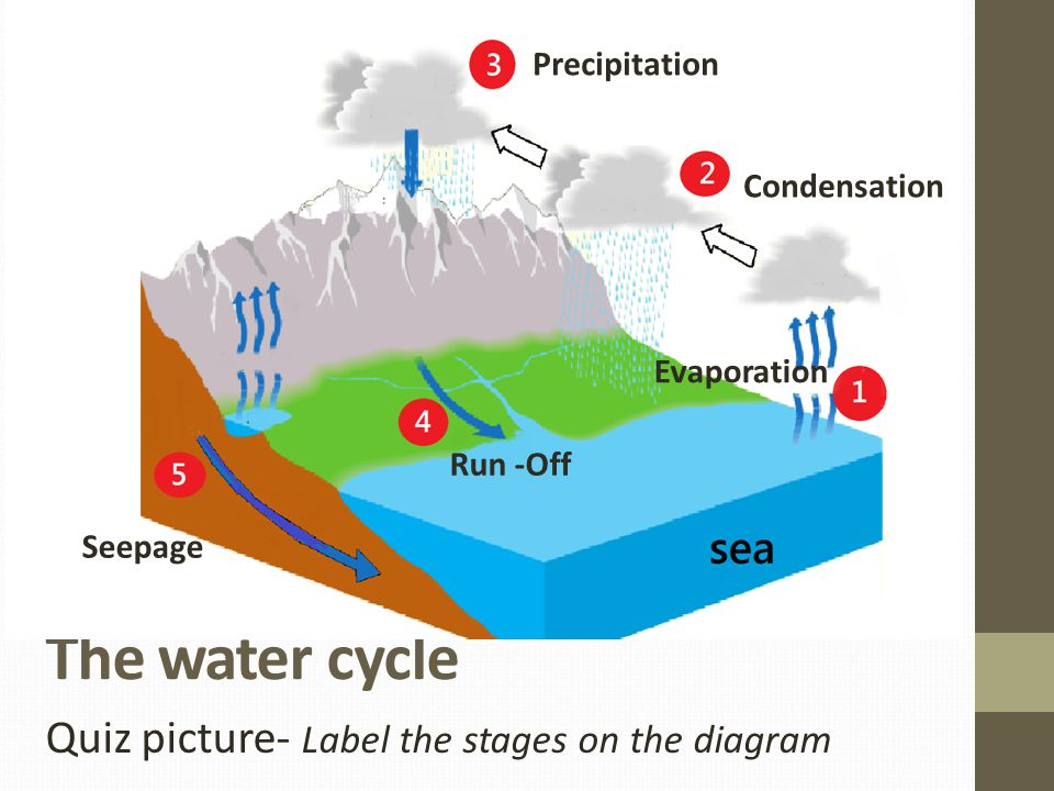 The water cycle Quiz picture- Label the stages on the diagram