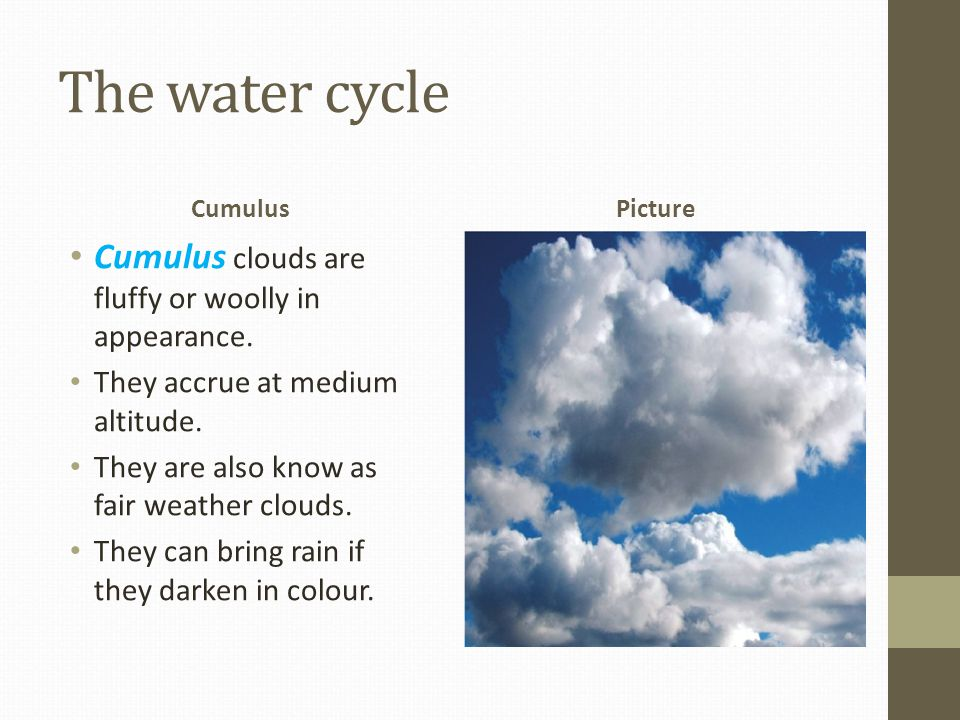 The water cycle Cumulus clouds are fluffy or woolly in appearance.