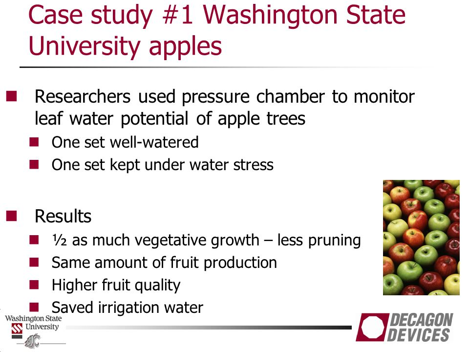 Case study #1 Washington State University apples