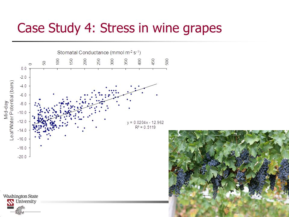 Case Study 4: Stress in wine grapes